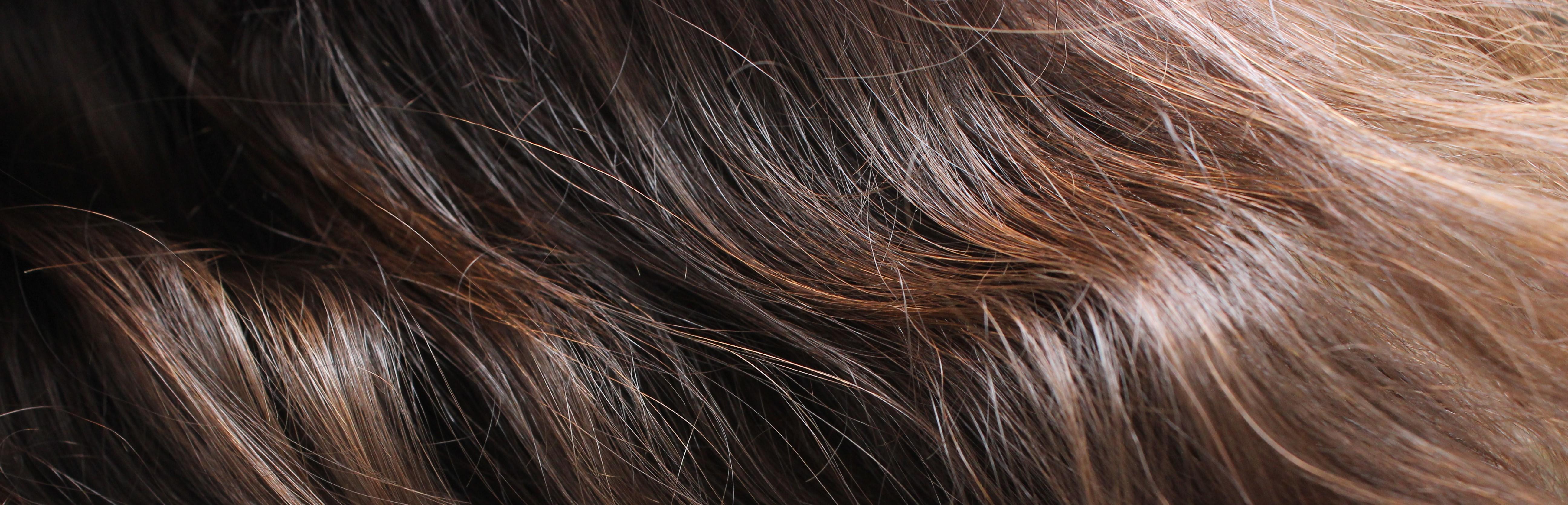 Couleur de cheveux marron  coloration caramel, broux, miel