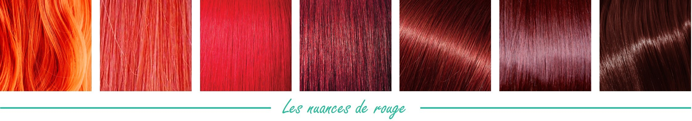 Catalogue de couleur de cheveux laureate