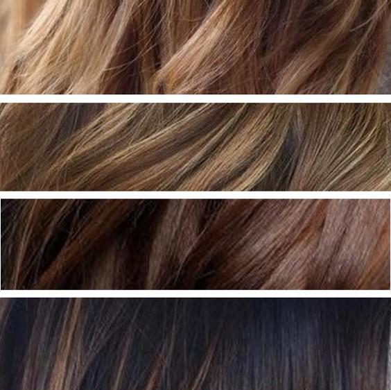 Palette couleur de cheveux marron
