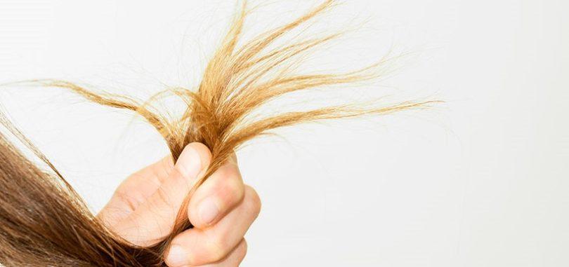 Réparer cheveux abimés