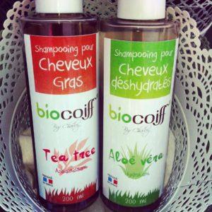 Shamppoing Biocoiff' avis